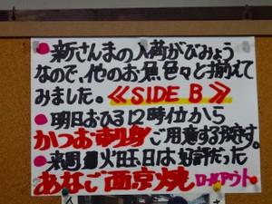 Sdsc07822