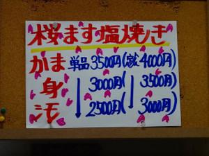 Sdsc05042
