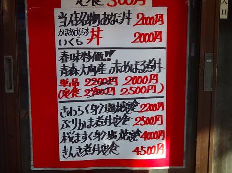 Sdsc09098