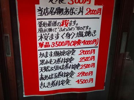 Sdsc09207