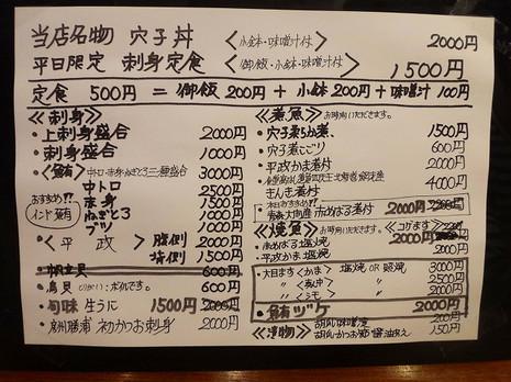 Sdsc03919