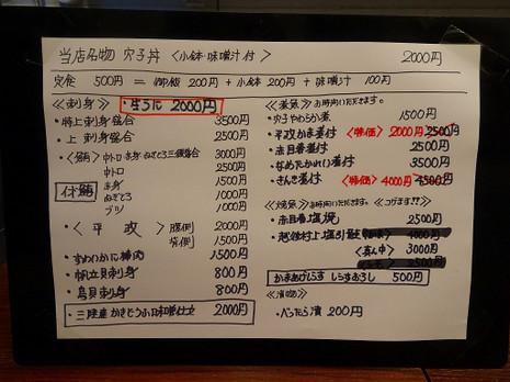 Sdsc01095